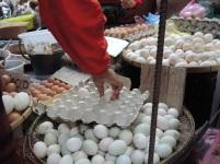 Des œufs de tous calibres