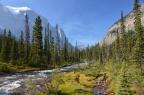 Côte ouest canadienne: parcs  nationaux